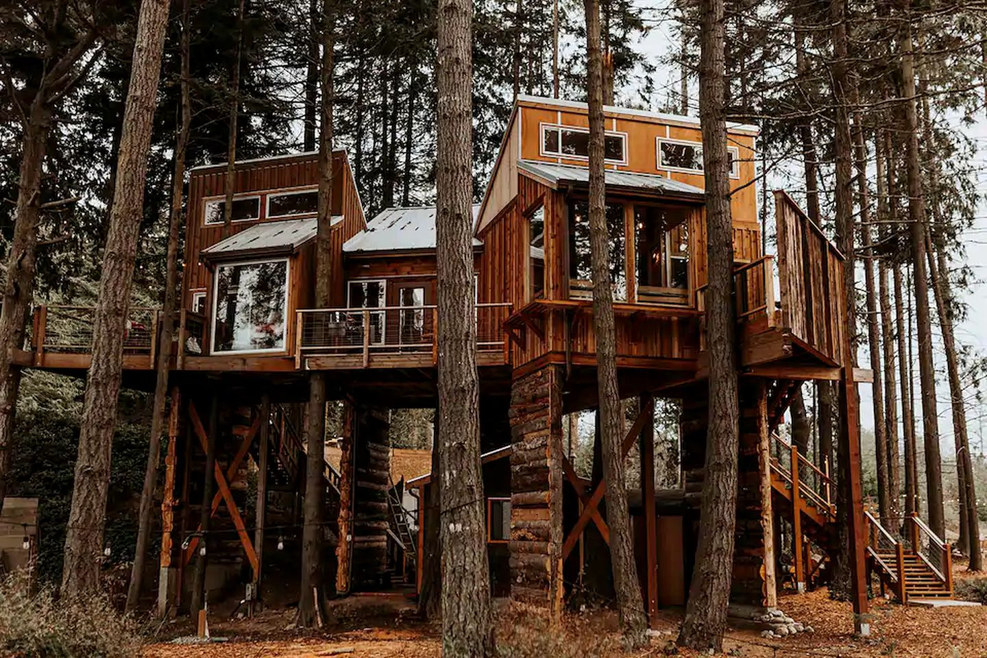 Tree house rental for glamping in Washington State