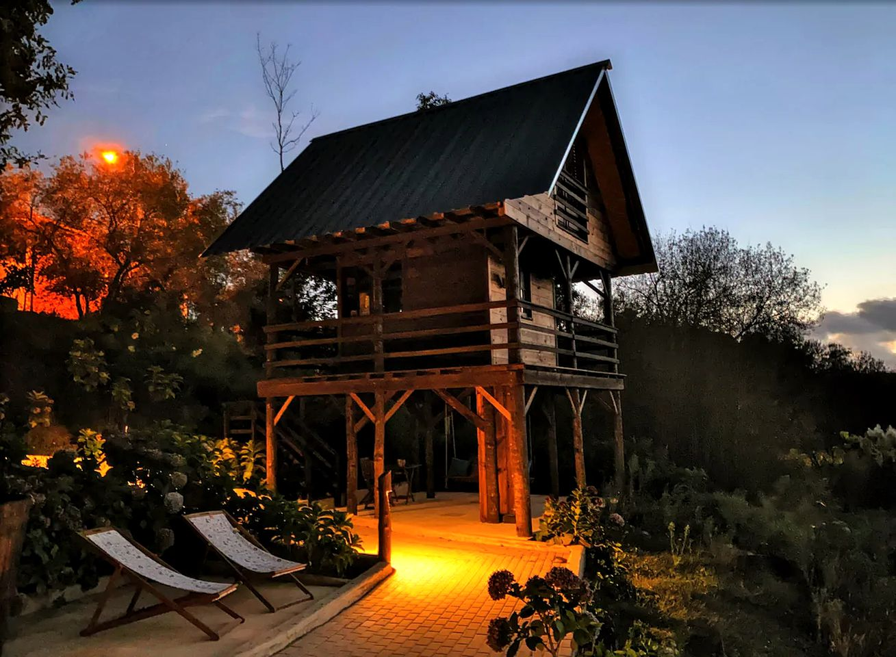 Tree house rental for glamping in Portugal