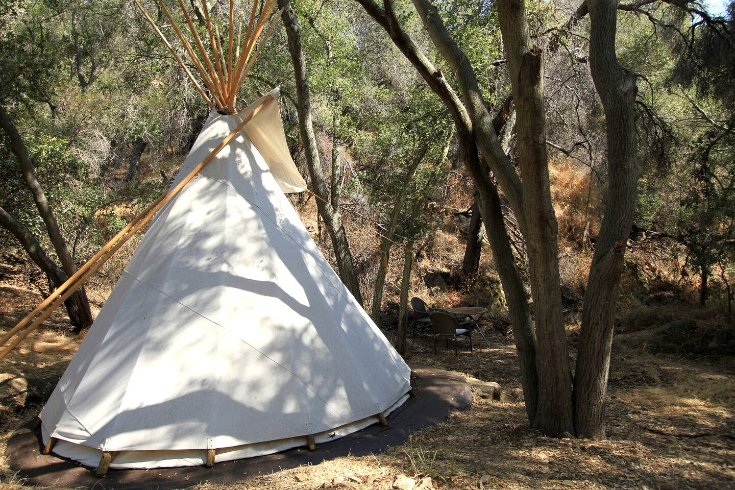 Charming tipi rental near LA ideal for California glamping