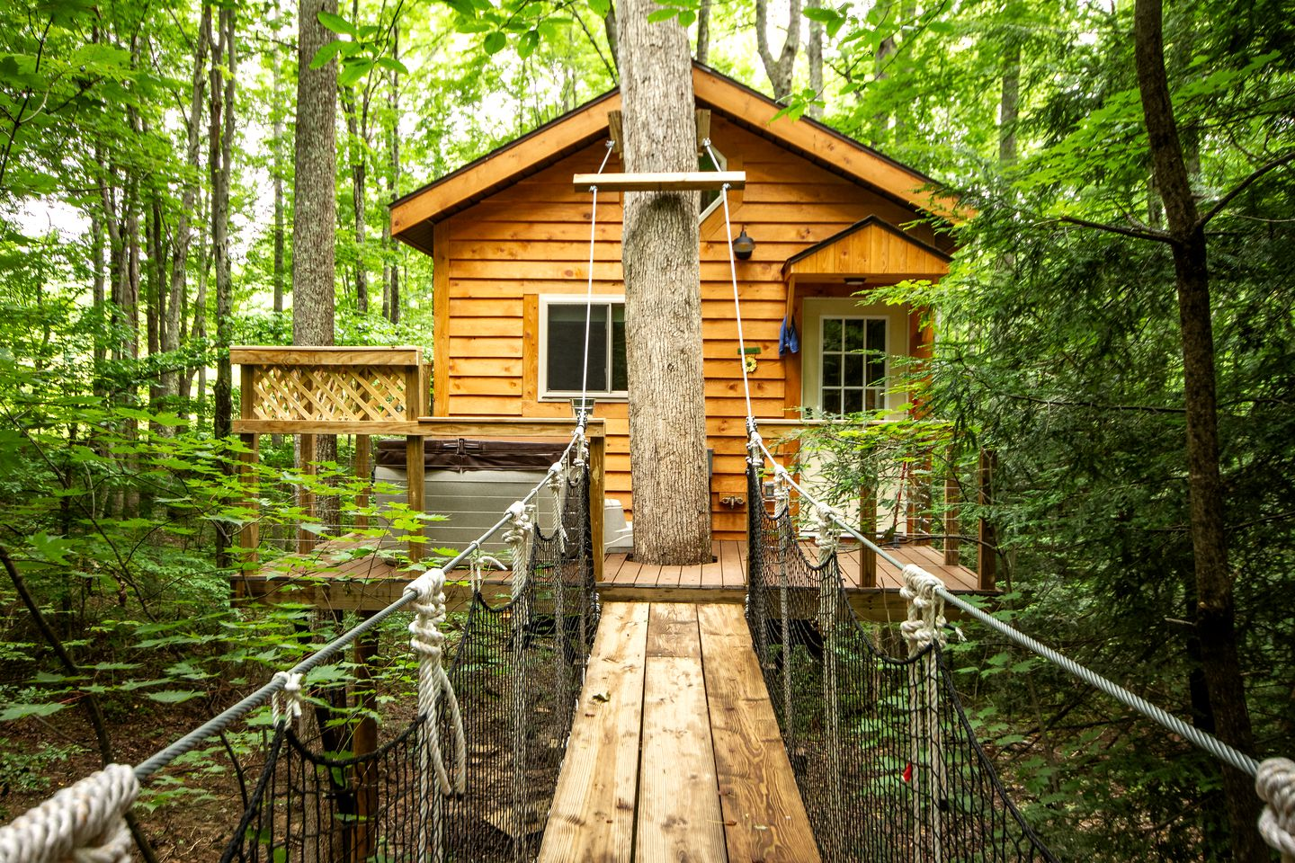 Tree Houses (Hico, West Virginia, United States)