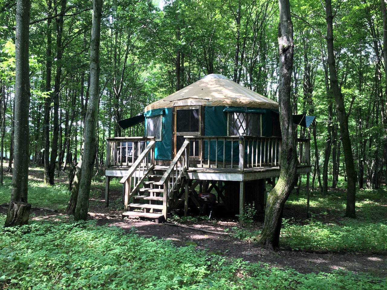 Yurts (East Meredith, New York, United States)