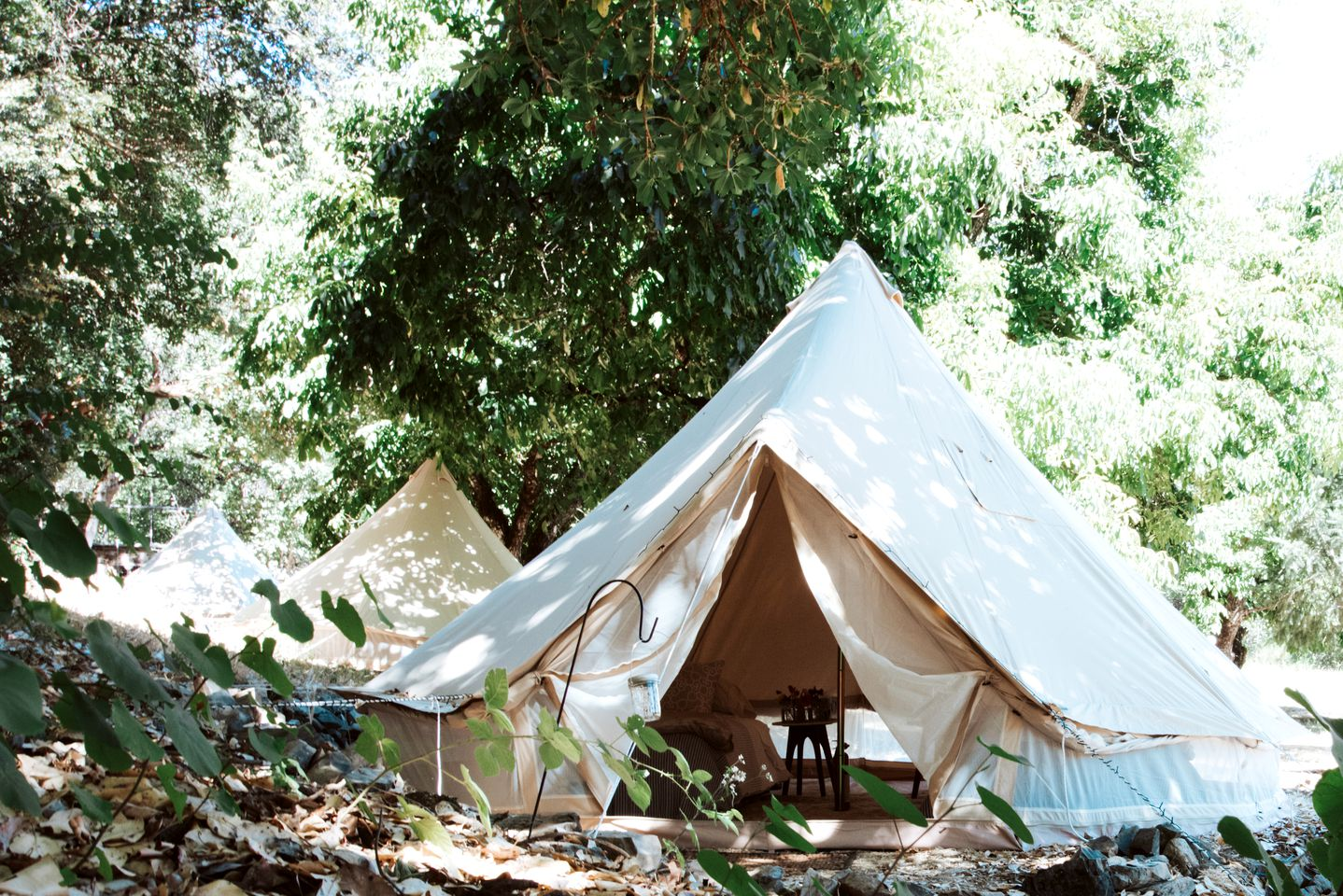 Glamping tent rental that's perfect for a unique vacation in California