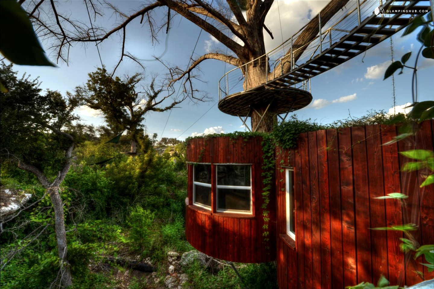 Tree House In Austin Texas