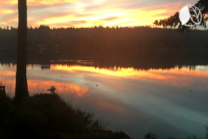 Photo of Beautiful Coastal Luxury Cabin Rental on Herron Island near Olympia, WA