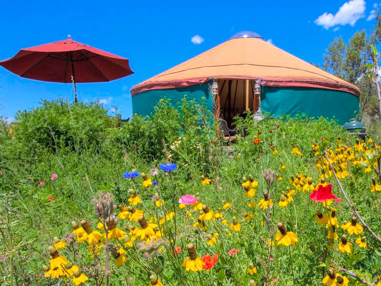 Yurts (Carbondale, Colorado, United States)