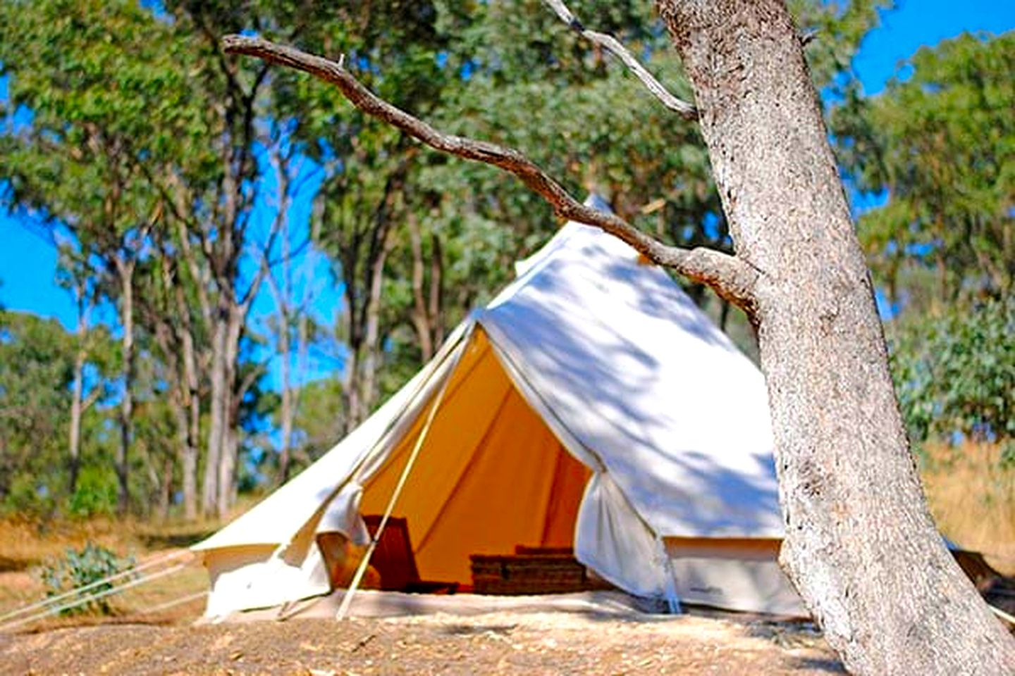 Come and try bell tent glamping in this lovely tent rental, surrounded by nature and located on a luxury camping site, perfect for romantic getaways