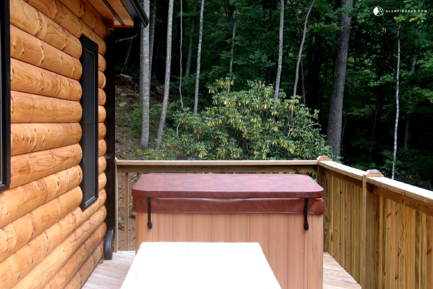 Vacation cabin rental near hendersonville north carolina for Cabins near hendersonville nc