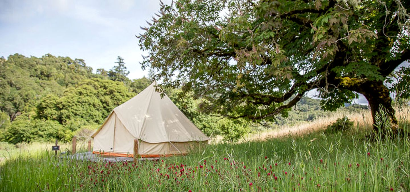Go glamping in California in this bell tent rental!