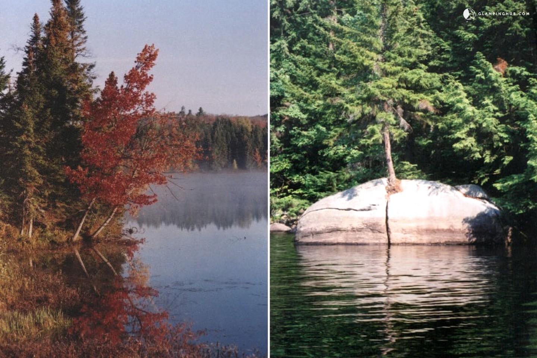 Adirondack Cabin Rental In Upstate New York
