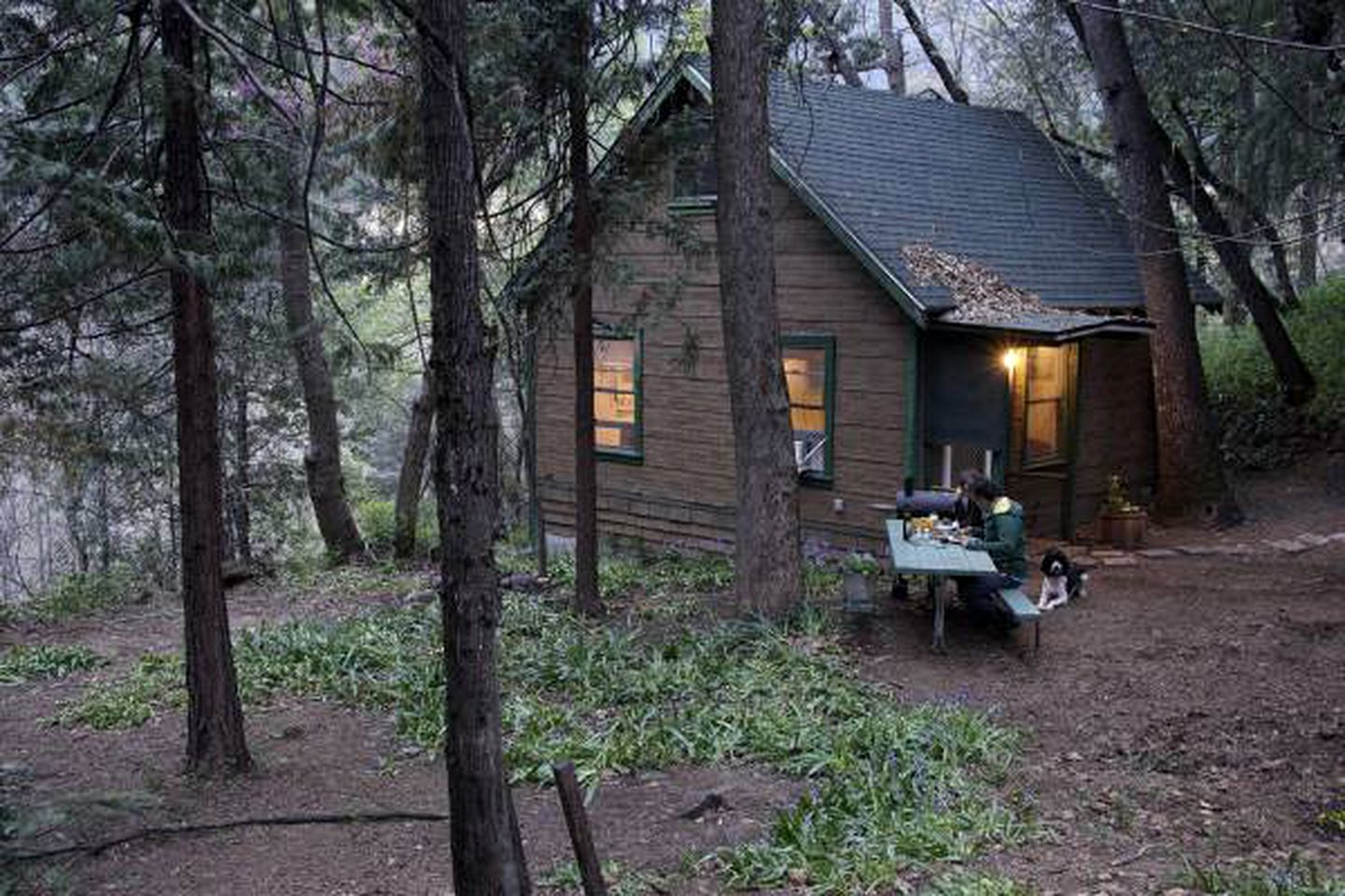 Cabins (Dunsmuir, California, United States)