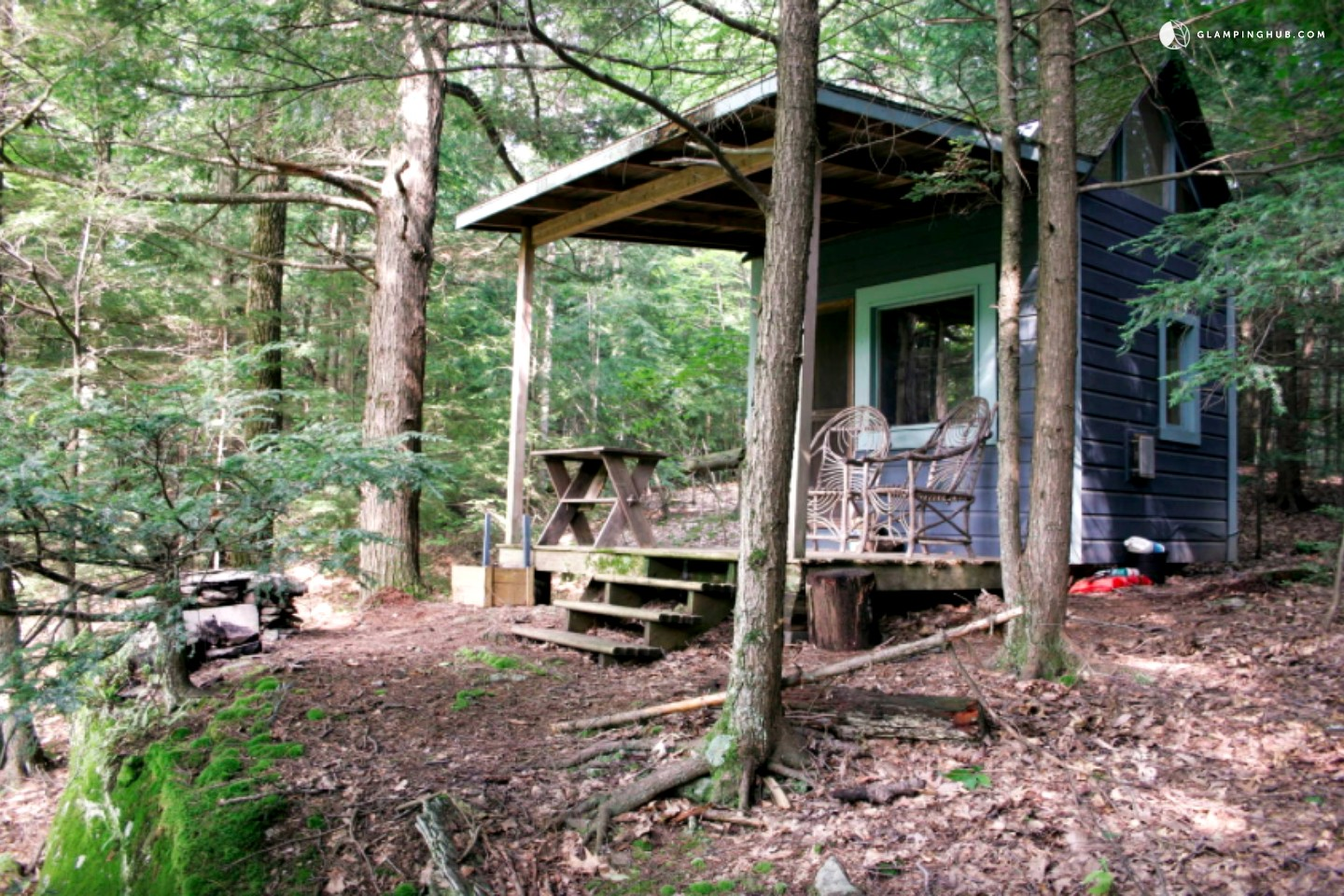 Charming Cabin In The Woods Near Woodstock New York