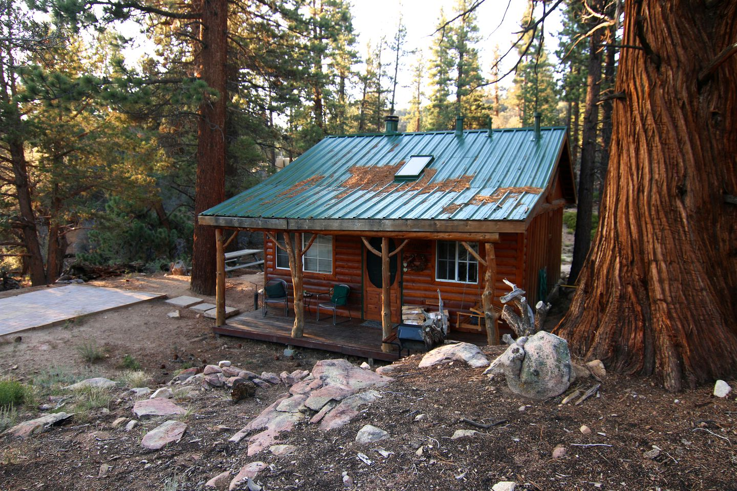 Angelus Oaks cabins for rent