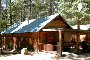 Luxury log cabins near albuquerque for Brazos river cabins