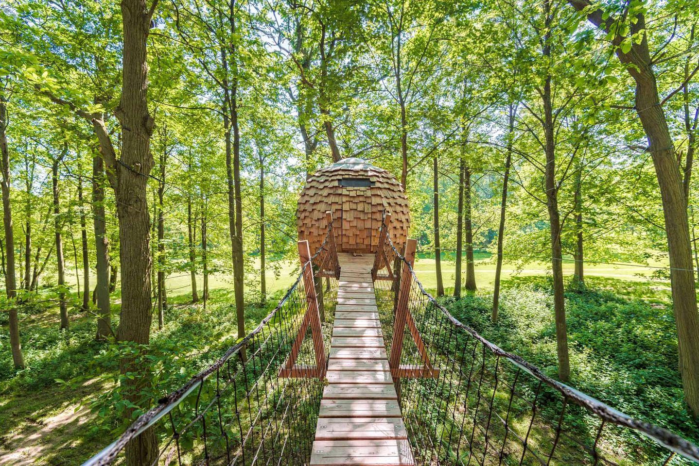 Tree Houses (Oise, Hauts-de-France, France)