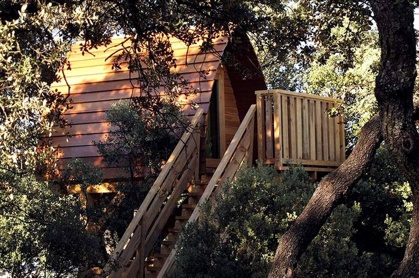 Tree Houses (Madrid, Madrid, Spain)