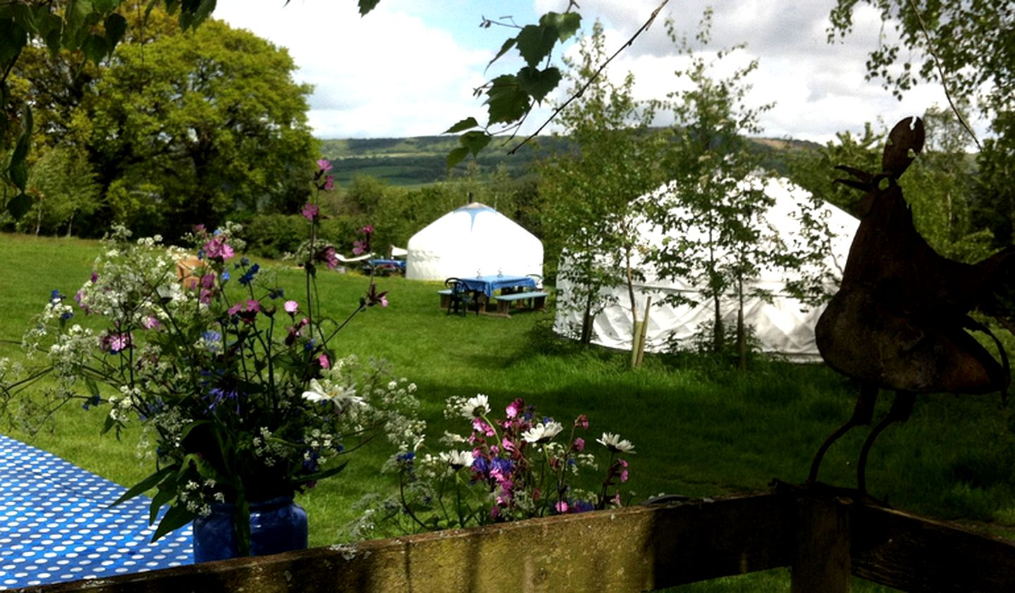 Yurts (Devon, England, United Kingdom)