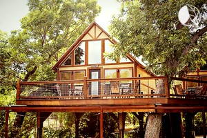 Tree Houses Tree House Glamping Tree House Luxury Camping