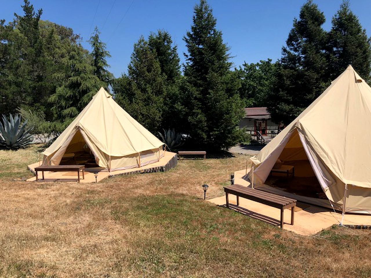 Yurt tent property for Sonoma glamping.