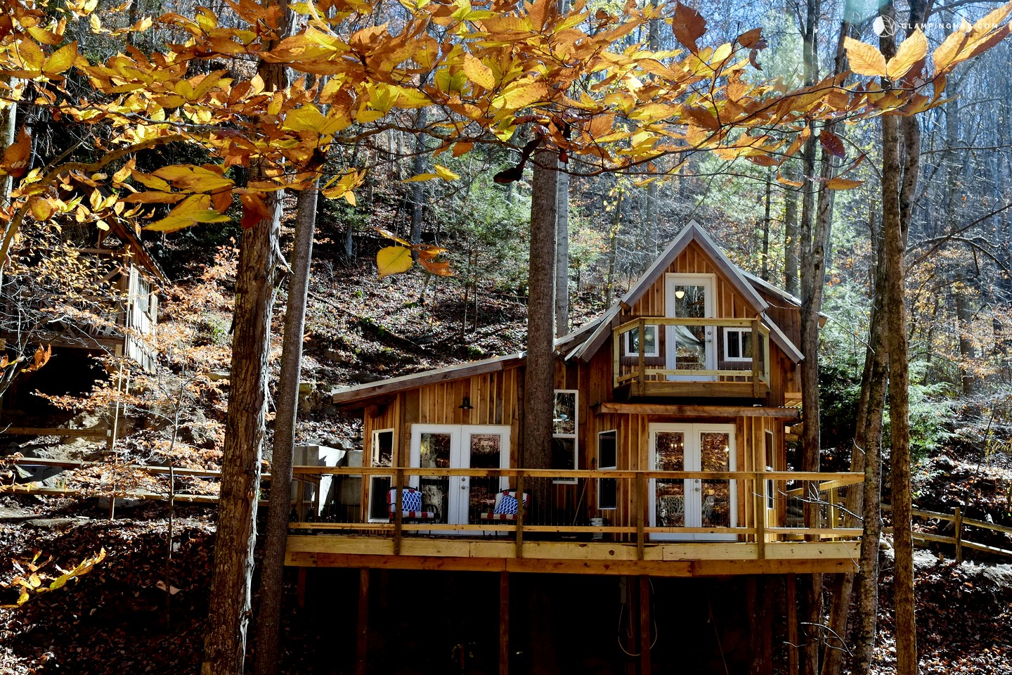 Tree house near asheville for Asheville cabin rentals pet friendly