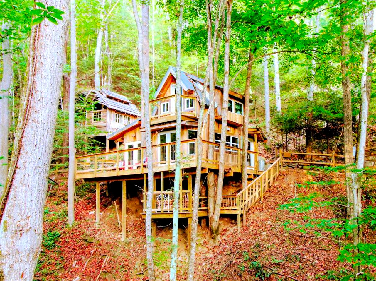 Tree house rentals in Green Mountain, North Carolina, United States
