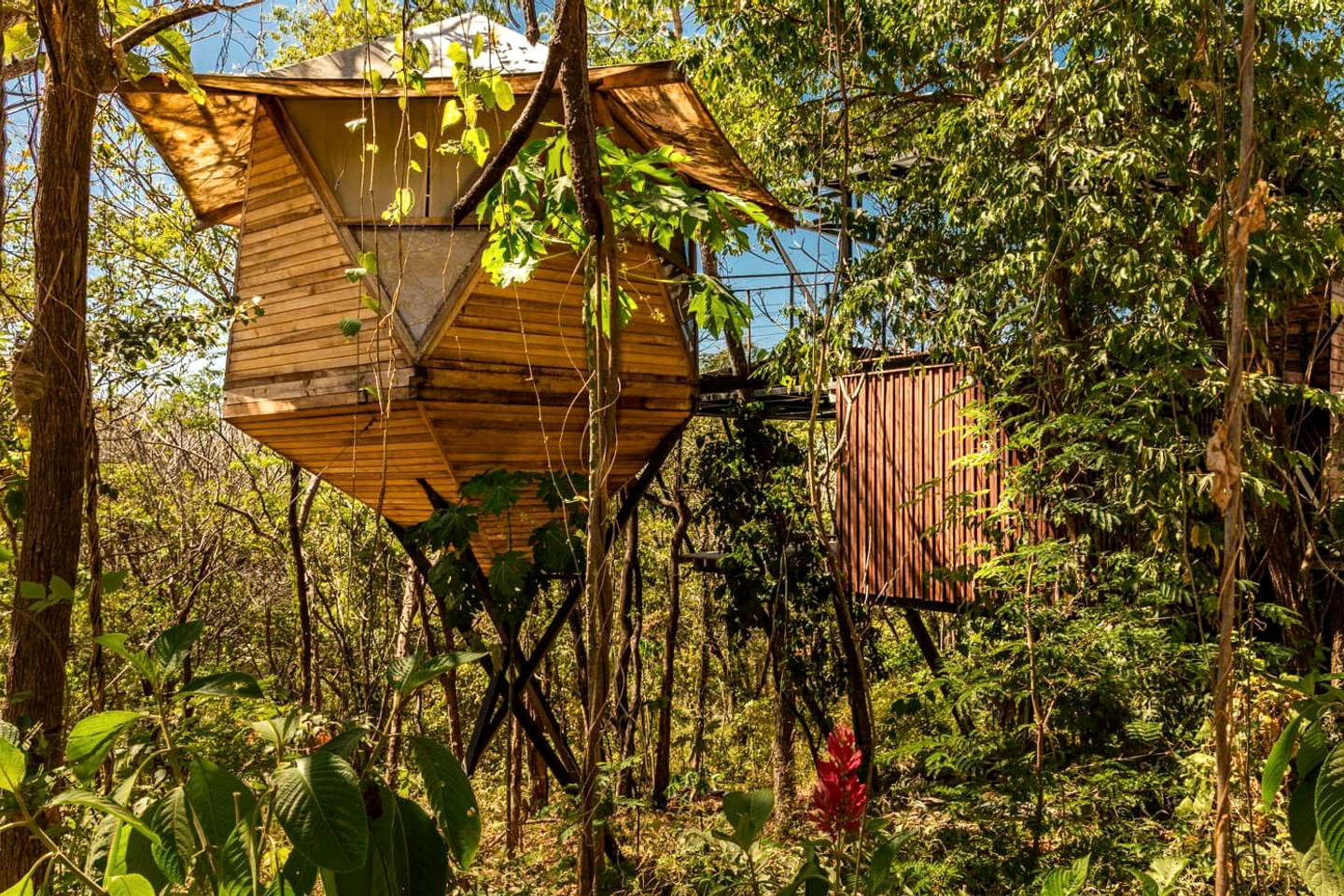 Tree House (Costa, Rica)