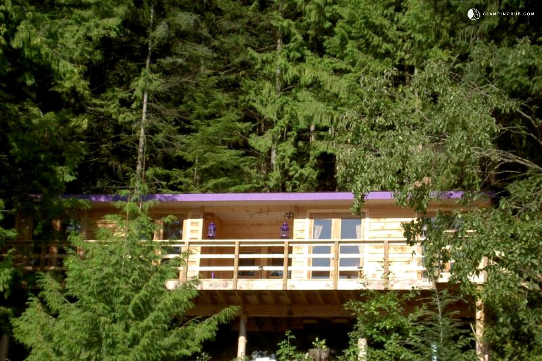 Pet Friendly Cabin Rental In British Columbia