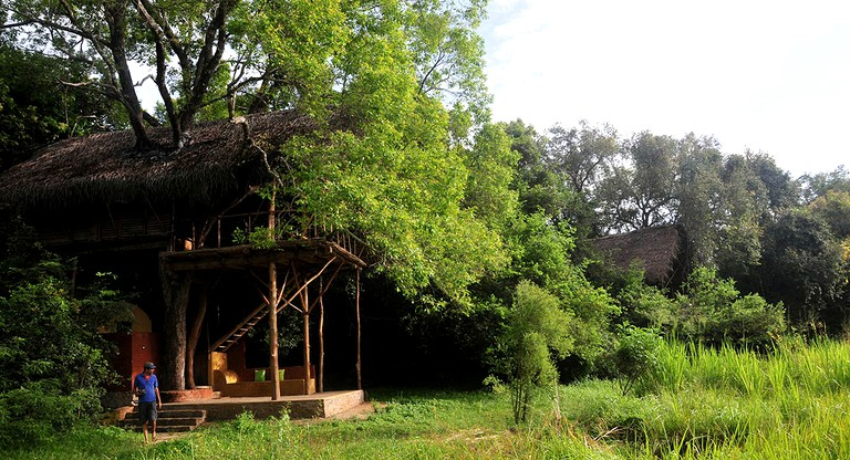 Exotic Tree House Rentals Tucked Away In The Rainforest In Sigiriya Sri Lanka