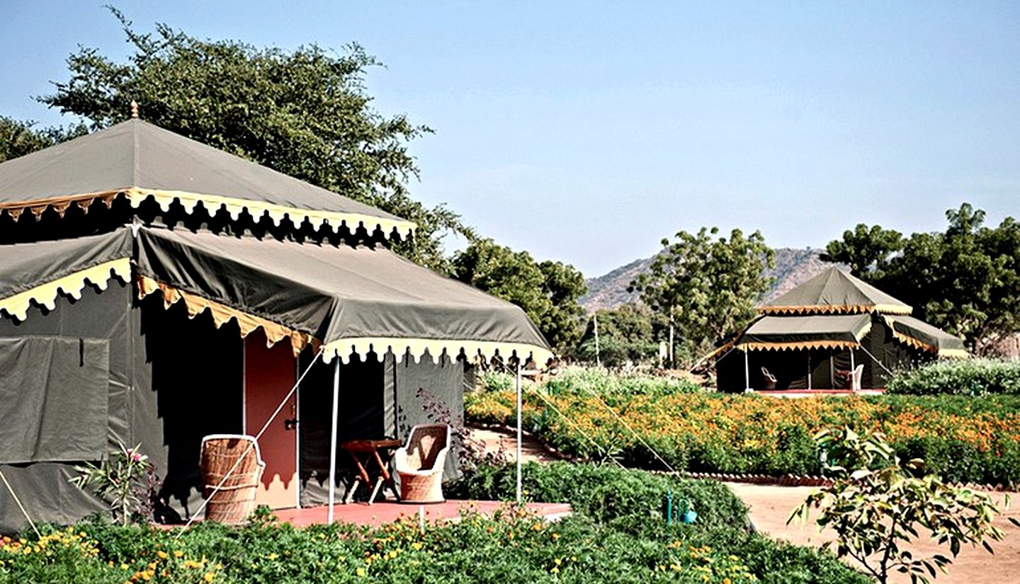 Tents (Pushkar, Rajasthan, India)