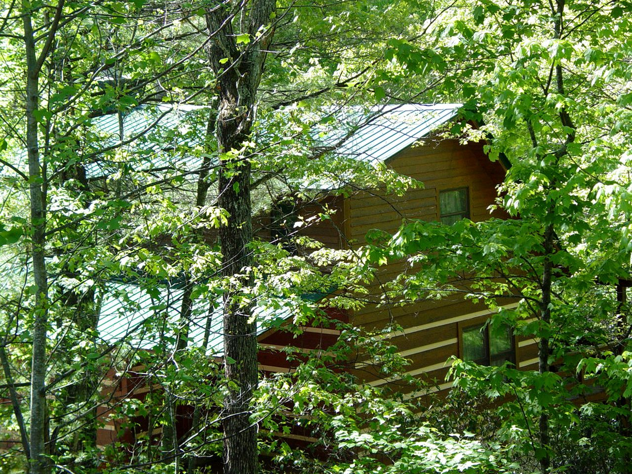 Cabins (Boone, North Carolina, United States)