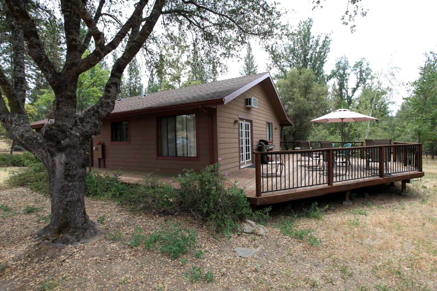 Pet friendly cabin in yosemite california for Yosemite national park cabin rentals