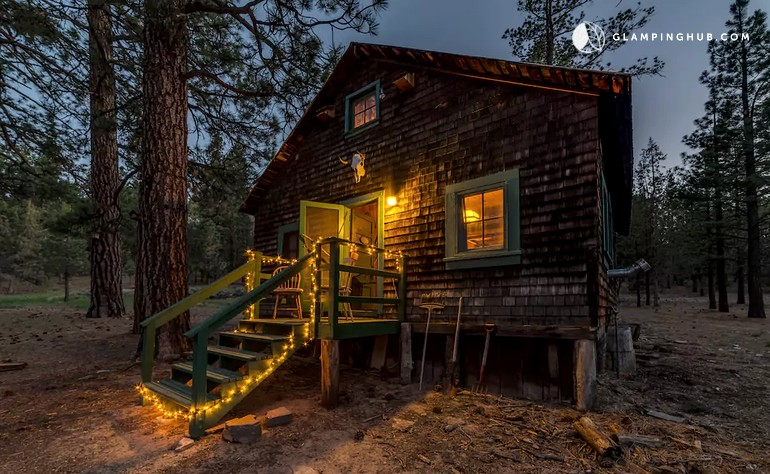com guide info travel vacation bear big guides cabins lake cabin vacationrentals rentals ts