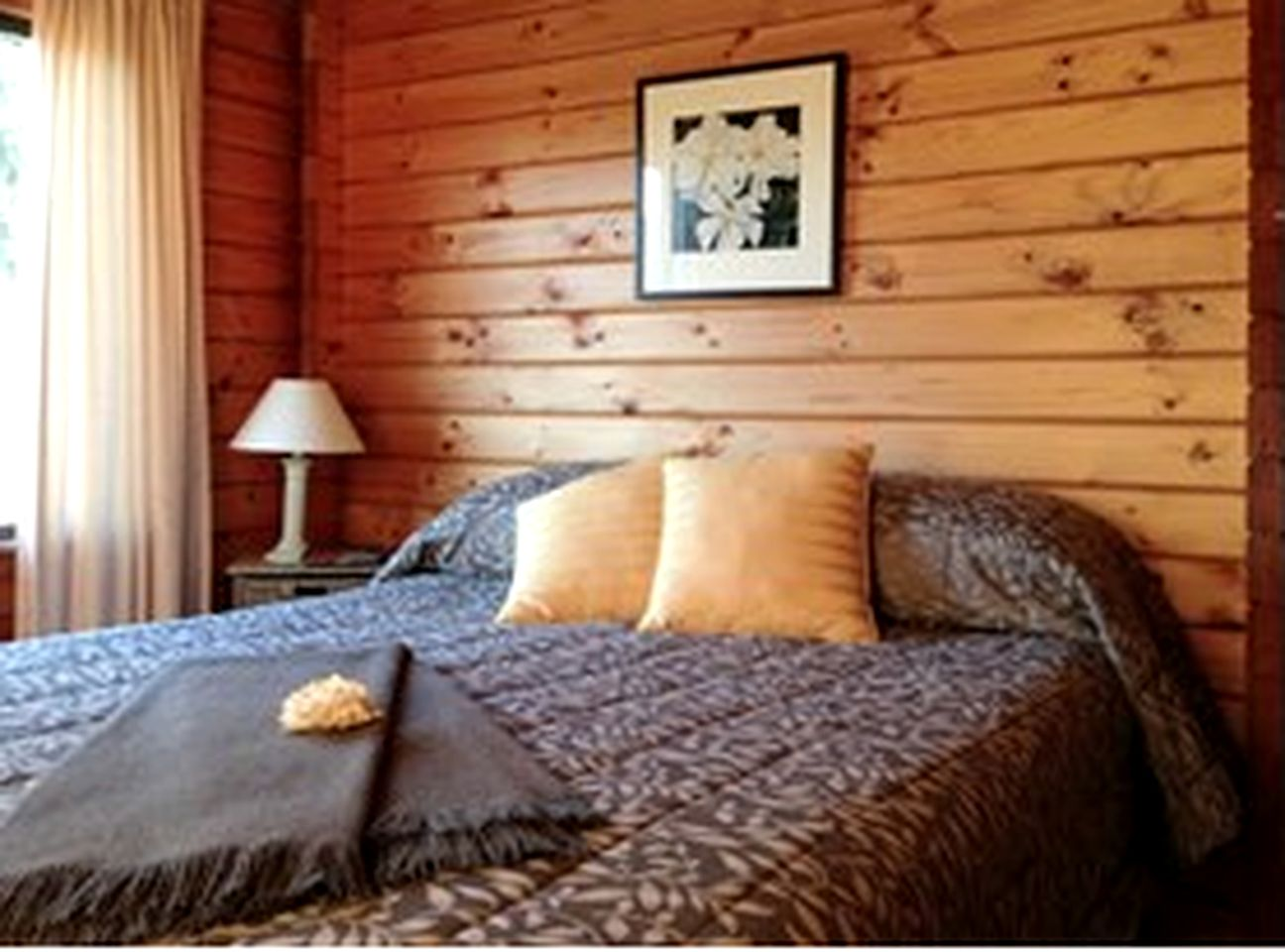 Book a Fox Glacier accommodation in New Zealand!