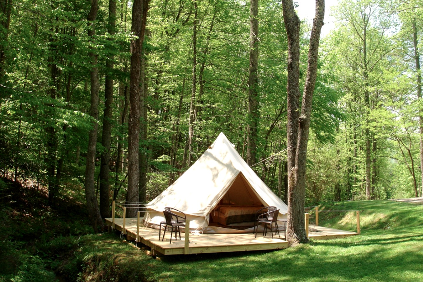 Glamping Tents Related Keywords Glamping Tents Long Tail