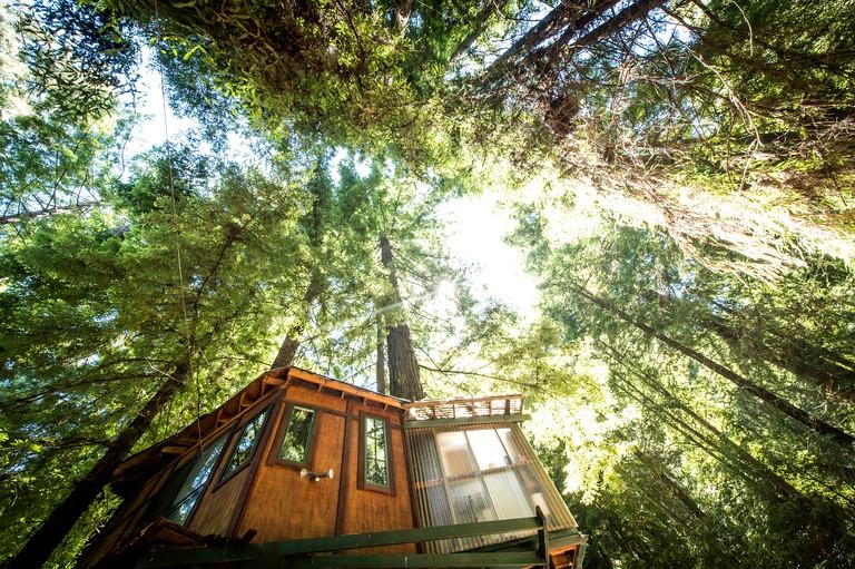 Glamping Tree House in Santa Cruz Mountains near Monterey Bay, California
