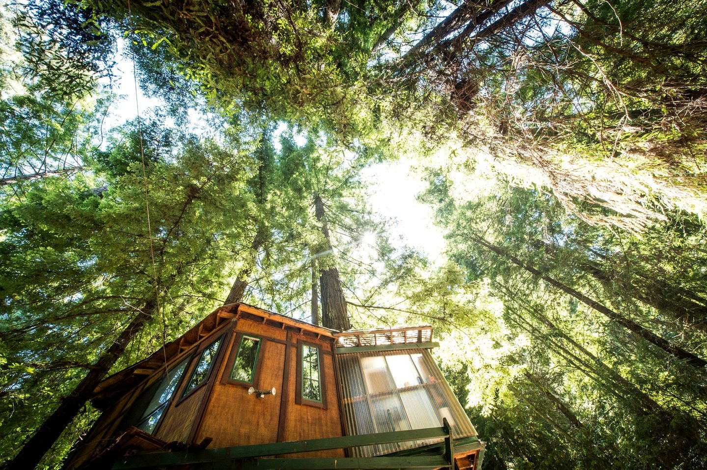 Treehouse hotel: Santa Cruz, California