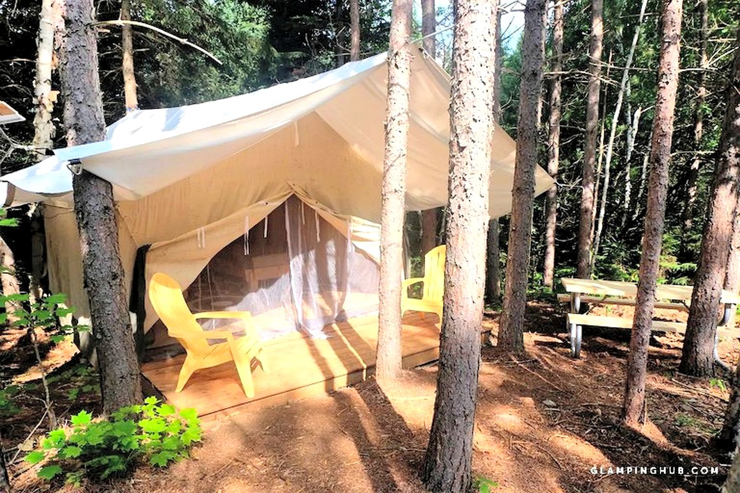 Safari Tents (Whitney, Ontario, Canada)
