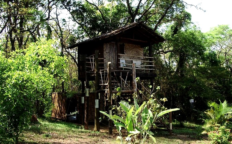 Gorgeous Tree House on Local Farm in Southeast India