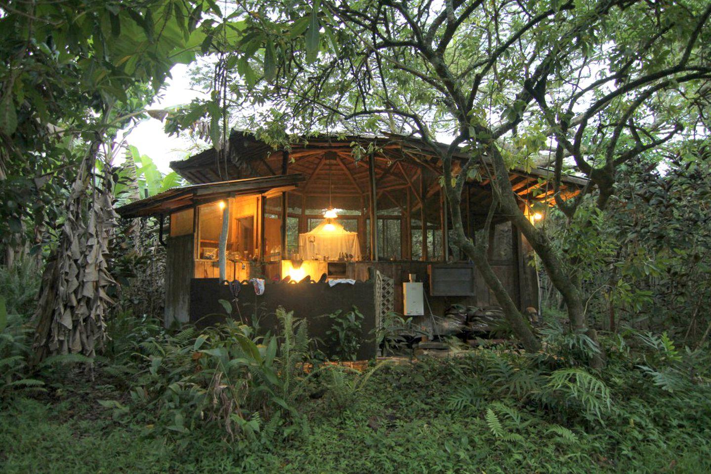 Unique cabin for rent in Pahoa, Hawaii, United States