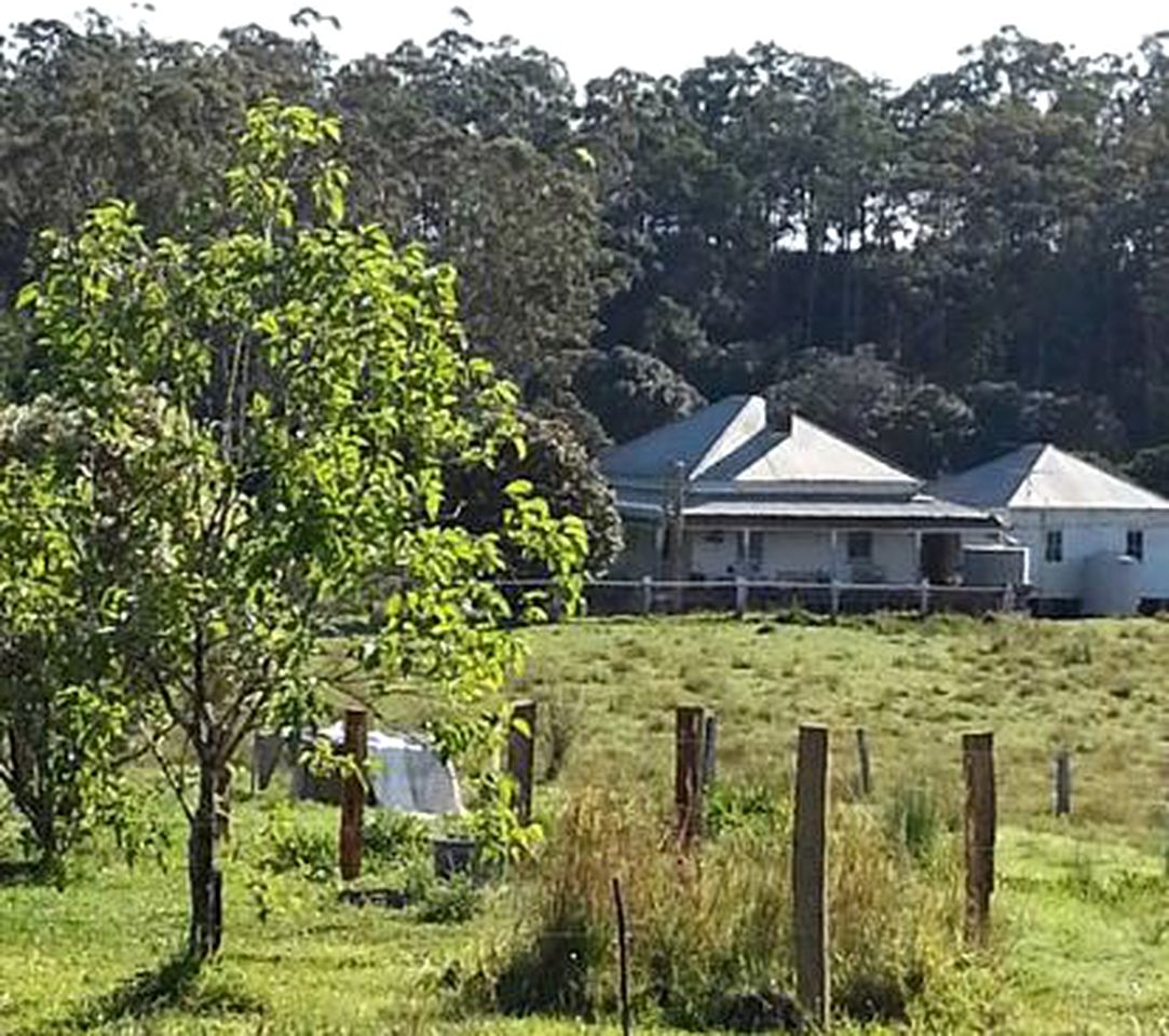 Cabins (Eungai, New South Wales, Australia)