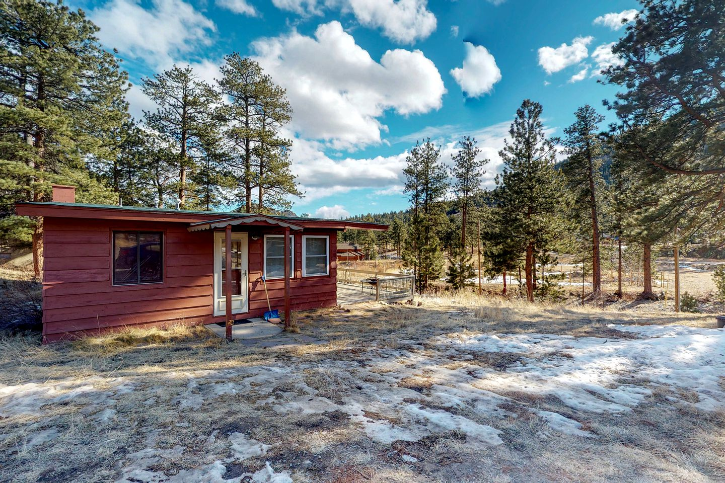 Estes Park lodging and dog-friendly cabin in a field, surrounded by pine trees.