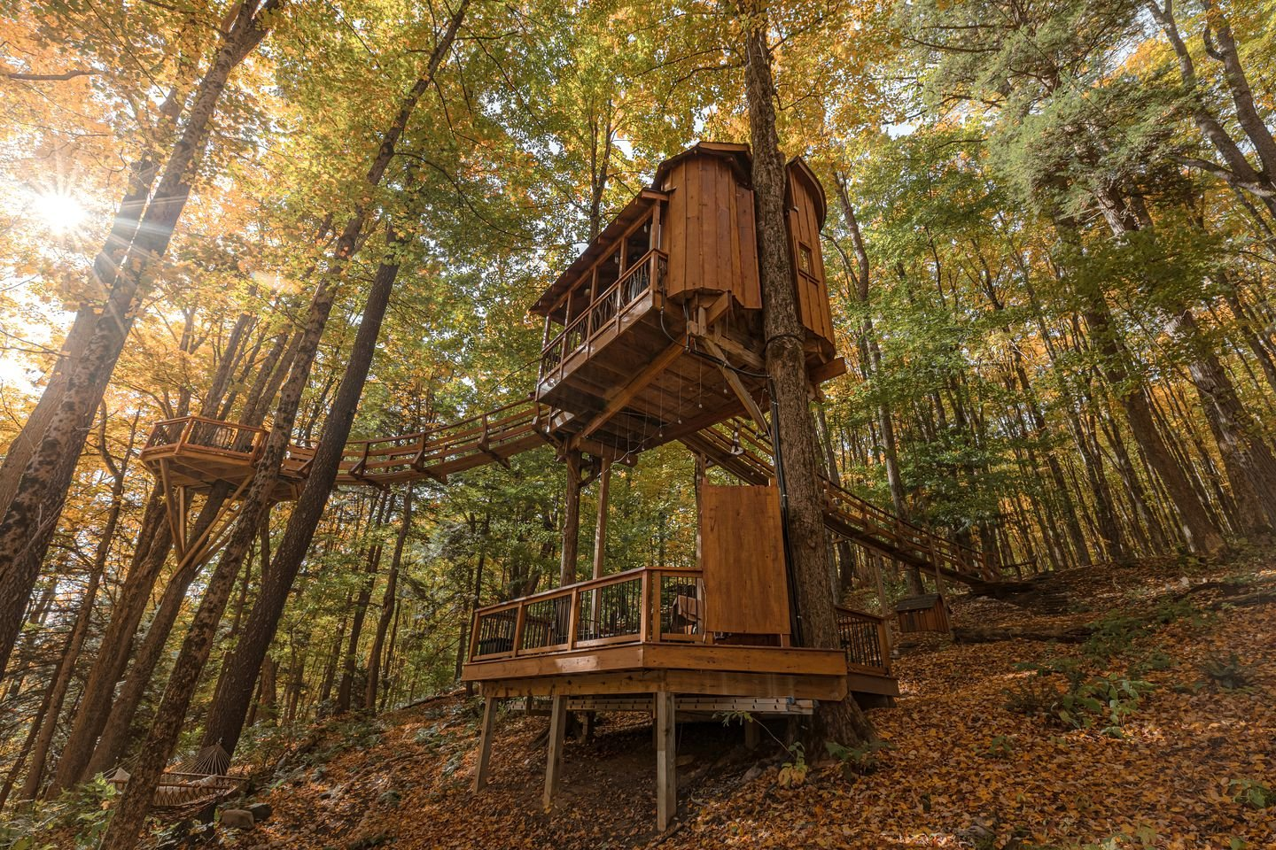 Tree Houses (Lafayette, New York, United States of America)