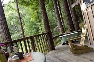 Photo of Inviting Cabins in the Trees Surrounded by Redwoods near Big Sur, California