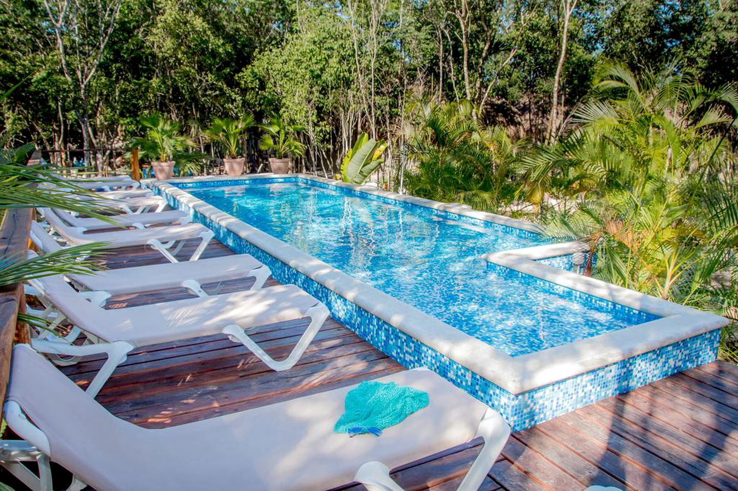 Pool with pool deck and beach chairs with palm trees around in a Tulum rental!