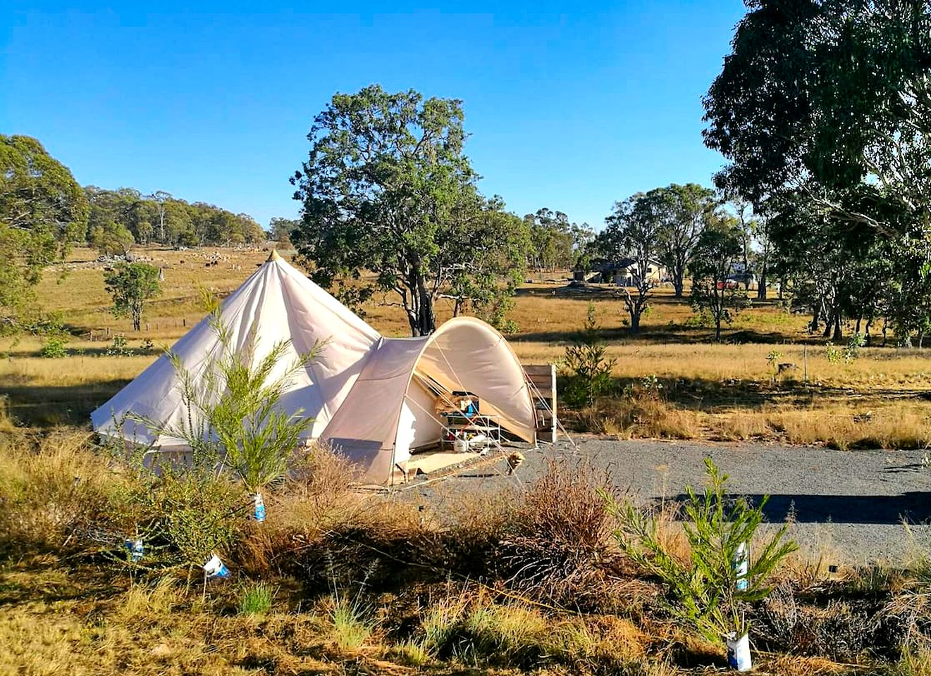 This cozy bell tents is ideal for Tenterfield camping and can accommodate a family holiday in New South Wales. Enjoy glamping in Australia!