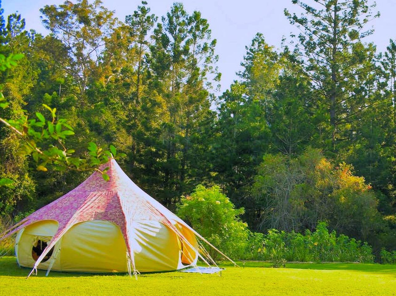 Go glamping in Northern Rivers with this romantic getaway in New South Wales