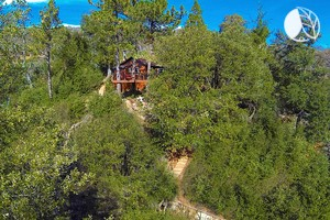 Photo of Luxurious Tree House Perched on the Mountains of Julian, California