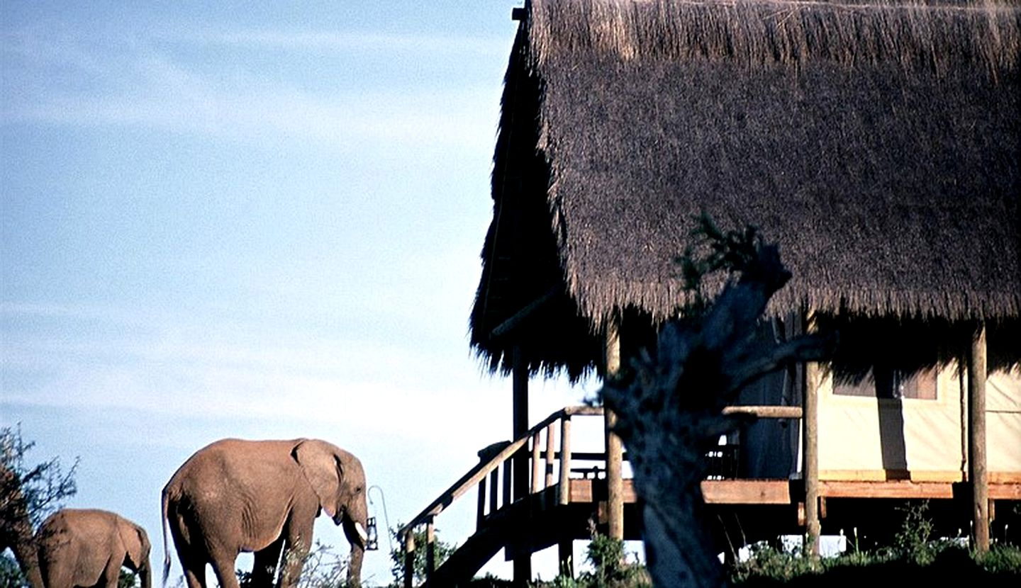 Safari Tents (Addo, Eastern Cape, South Africa)