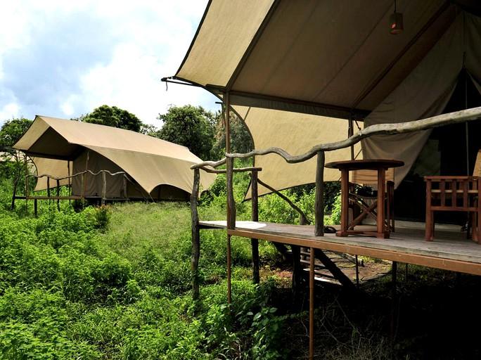 Luxury Safari Tents Tucked In Santa Cruz Island Galapagos Ecuador