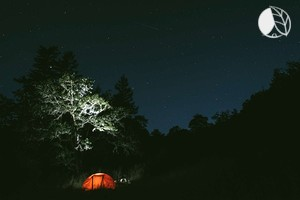 Photo of Luxury Tent Rentals on Camping Site in Mendocino County, California