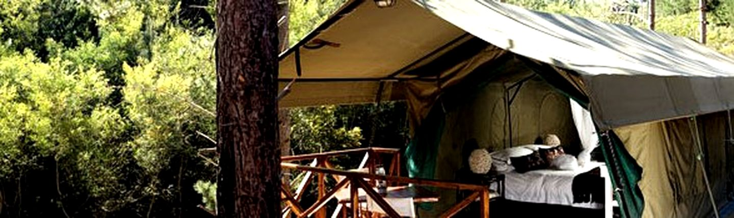 Safari Tents (Grabouw, Western Cape, South Africa)